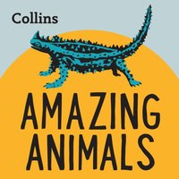 Collins - Amazing Animals: For ages 7-11 - Opracowanie zbiorowe - audiobook