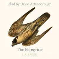 Peregrine - J. A. Baker - audiobook