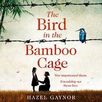 Bird in the Bamboo Cage - Hazel Gaynor - audiobook