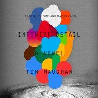 Infinite Detail - Tim Maughan - audiobook
