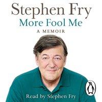 More Fool Me - Stephen Fry - audiobook