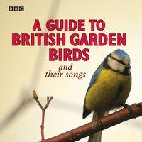 Guide To British Garden Birds - Stephen Moss - audiobook