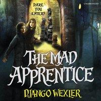 Mad Apprentice - Django Wexler - audiobook