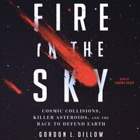 Fire in the Sky - Gordon L. Dillow - audiobook