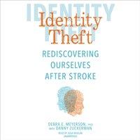 Identity Theft - Debra E. Meyerson - audiobook