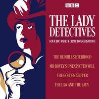 Lady Detectives - Catherine Louisa Perkis - audiobook
