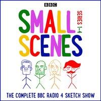 Small Scenes - Benjamin Partridge - audiobook