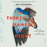 Thirty Names of Night - Zeyn Joukhadar - audiobook