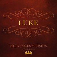 Book of Luke - Made for Success - audiobook