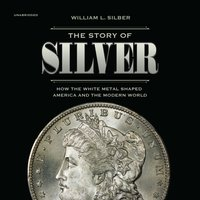 Story of Silver - William L. Silber - audiobook