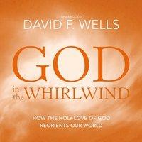 God in the Whirlwind - David F. Wells - audiobook