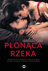 Płonąca rzeka - K.C. Hiddenstorm - ebook