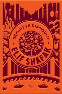 Bękart ze Stambułu - Elif Shafak - ebook