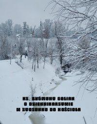 O dziennikarstwie w stosunku do Kościoła - Zygmunt Golian - ebook