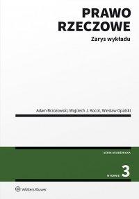 Prawo rzeczowe. Zarys wykładu - Adam Brzozowski - ebook
