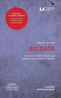 Big Data. Krótkie Wprowadzenie 30 - Dawn E. Holmes - ebook