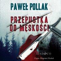 Przepustka do męskości. Komisarz Przygodny. Tom 3 - Paweł Pollak - audiobook