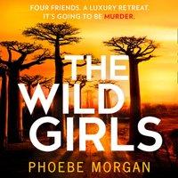 Wild Girls - Phoebe Morgan - audiobook