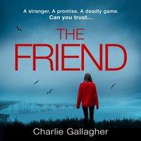 Friend - Charlie Gallagher - audiobook