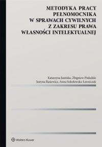 Metodyka pracy pełnomocnika w sprawach cywilnych z zakresu prawa własności intelektualnej - Katarzyna Jasińska - ebook