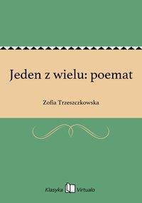 Jeden z wielu: poemat