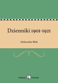 Dzienniki 1901-1921