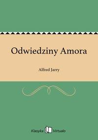 Odwiedziny Amora - Alfred Jarry - ebook