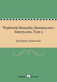 Wędrówki literackie, fantastyczne i historyczne. Tom 3