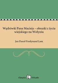 Wędrówki Pana Macieja – obrazki z życia wiejskiego na Wołyniu - Jan Paweł Ferdynand Lam - ebook