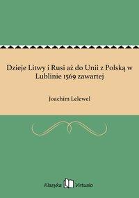 Dzieje Litwy i Rusi aż do Unii z Polską w Lublinie 1569 zawartej