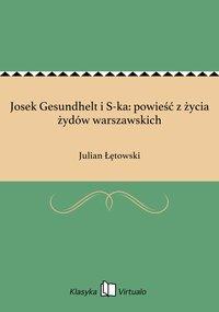 Josek Gesundhelt i S-ka: powieść z życia żydów warszawskich