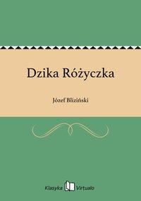 Dzika Różyczka - Józef Bliziński - ebook