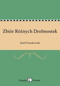 Zbiór Różnych Drobnostek - Józef Trzaskowski - ebook