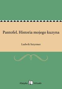 Pantofel. Historia mojego kuzyna - Ludwik Sztyrmer - ebook