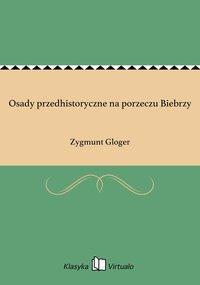 Osady przedhistoryczne na porzeczu Biebrzy - Zygmunt Gloger - ebook