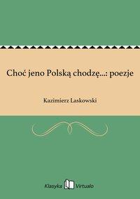Choć jeno Polską chodzę...: poezje