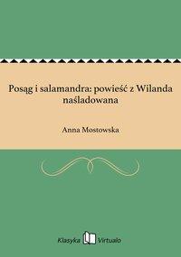 Posąg i salamandra: powieść z Wilanda naśladowana
