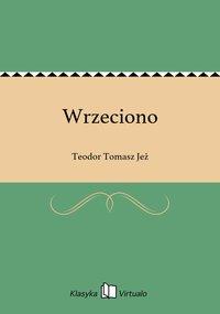Wrzeciono - Teodor Tomasz Jeż - ebook