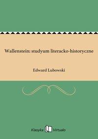 Wallenstein: studyum literacko-historyczne