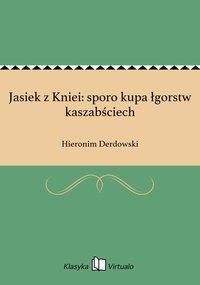 Jasiek z Kniei: sporo kupa łgorstw kaszabściech - Hieronim Derdowski - ebook