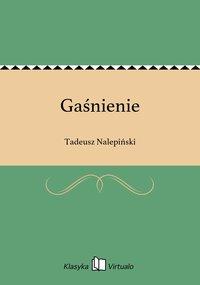Gaśnienie - Tadeusz Nalepiński - ebook