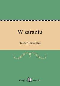 W zaraniu - Teodor Tomasz Jeż - ebook
