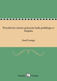 Przysłowia i mowy potoczne ludu polskiego w Szlązku