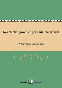 Kęs chleba: gawęda z pól nadniemeńskich - Władysław Syrokomla - ebook