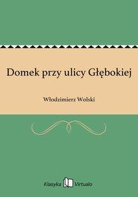 Domek przy ulicy Głębokiej - Włodzimierz Wolski - ebook