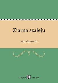 Ziarna szaleju - Jerzy Gąssowski - ebook