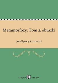 Metamorfozy. Tom 2: obrazki