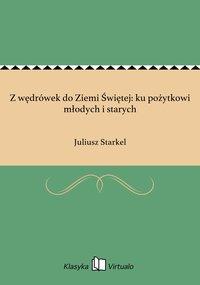 Z wędrówek do Ziemi Świętej: ku pożytkowi młodych i starych - Juliusz Starkel - ebook