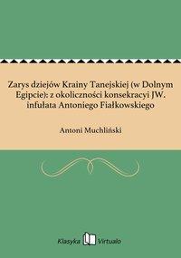 Zarys dziejów Krainy Tanejskiej (w Dolnym Egipcie): z okoliczności konsekracyi JW. infułata Antoniego Fiałkowskiego - Antoni Muchliński - ebook