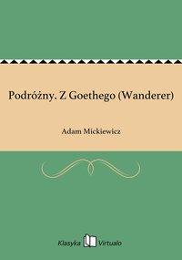 Podróżny. Z Goethego (Wanderer)